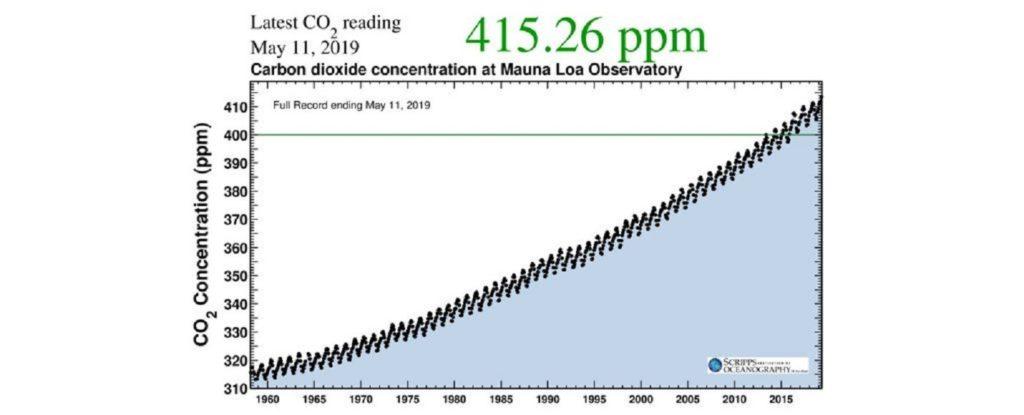 Carbon datazione documentario